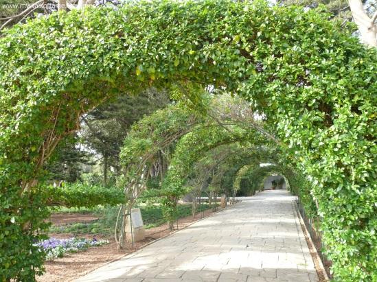 San Anton Gardens 2